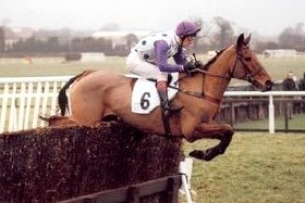 Quixall Crossett jumping a fence during a race