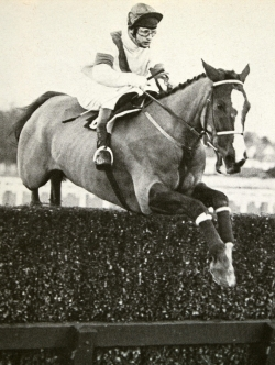 Bob Champion & Aldaniti winning the Whitbread Trial Handicap Chase at Ascot (11th February 1981)