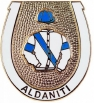 Aldaniti pin badge
