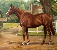 Oil painting of Aldaniti by E Richardson