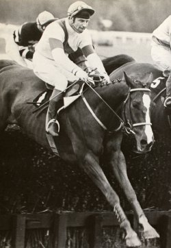 Bob Champion & Aldaniti winning the Stoke Handicap Chase at Haydock (5th May 1979)