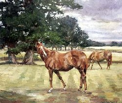 Aldaniti in retirement at Barkfold Manor in West Sussex. Watercolour by Claire Eva Burton
