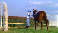 Scene from 'Champions' showing jockey Richard Rowe dismounting Aldaniti after the horse  becomes lame during a race at Sandown