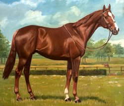 Oil painting of Aldaniti