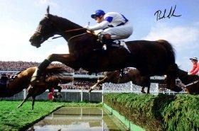 Photo (signed by Bob Champion) of Aldaniti clearing the water jump in the 1981 Grand National