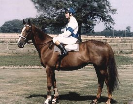 Bob Champion on Aldaniti