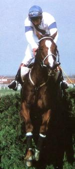 Bob Champion and Aldaniti clear the last fence in the 1981 Grand National