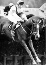 Bob Hampion and Aldaniti win at Haydock in May 1979. Two months later, Bob learned he had cancer