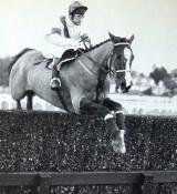 Bob Champion and Aldaniti win at Ascot in February 1981