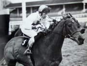 Bob Champion winning on Josh Gifford's horse 'Kybo' at Ascot in 1980