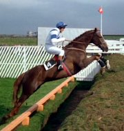 Aldaniti, ridden by John Burke (screenshot from 'Champions')