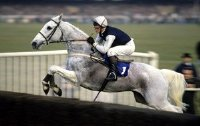 Richard Dunwoody riding Desert Orchid