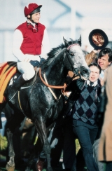 Richard Dunwoody on Champion Hurdle winner Kribensis at Cheltenham in 1990