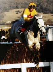 Richard Dunwoody on One Man at Cheltenham in 1997