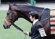 Willie Carson's 1980 Derby winner Henbit
