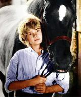 Mark Lester as Joe Evans in 'Black Beauty'