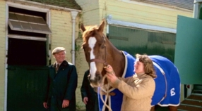 Scene from Champions where Beryl Millam brings the fully-recovered Aldaniti back to the stables to start training