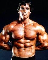 Arnold Schwarzenegger Body
