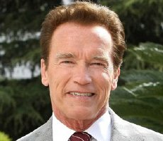 Link to Arnold Schwarzenegger page