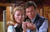 William Shatner & Tiffany Bolling in 'Kingdom of the Spiders'